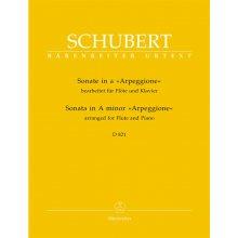 """SCHUBERT F. Sonata in A minor """"Arpeggione"""" D.821"""