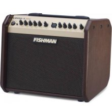 FISHMAN LBX500 Loudbox Mini