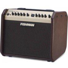 FISHMAN LBX500