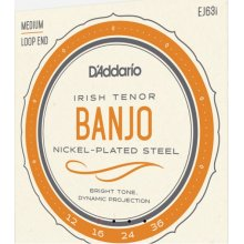 D'Addario EJ63i Irish Tenor Banjo