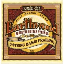 Ernie Ball 2061 5-String Banjo