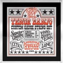 Ernie Ball 2306 Tenor Banjo